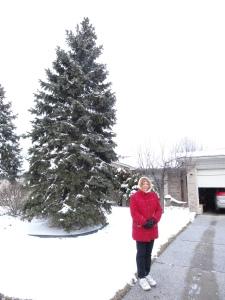 Snow free driveway