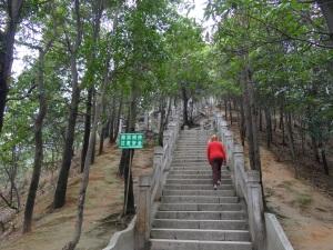 2013-01-27 Yangtaishan 029
