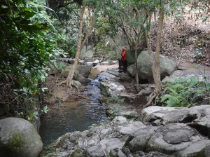2013-01-27 Yangtaishan 066