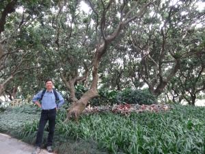 2013-02-03 Meilin Park 007