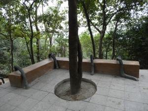 2013-02-17 Fonghuangshan 028