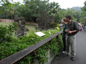 2013-11-16 Taipei Zoo hx30 022