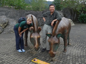 2013-11-16 Taipei Zoo hx30 039