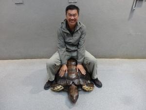 2013-11-16 Taipei Zoo hx30 097