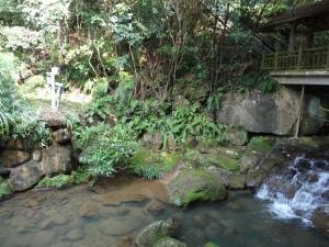 2013-11-17 Baishi Chiao hx30 006