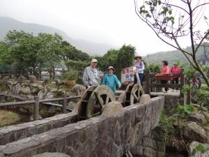 2014-03-30 yangmingshan 035