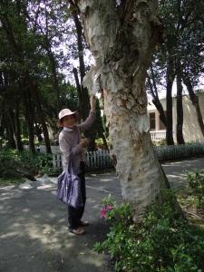 2014-03-30 yangmingshan 111